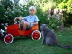 Chat et jeune garçon