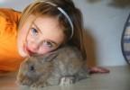 Petite fille et lapin