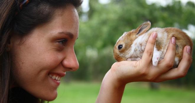 Jeune fille et lapin