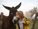 Petite fille et âne