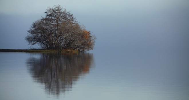 Lac sur la côte aquitaine