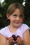 petite fille et cerises