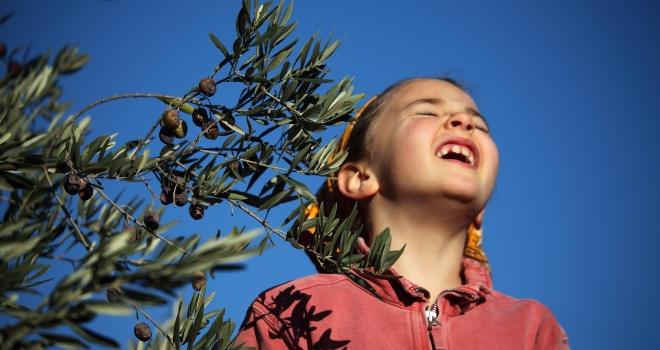 fillette et olivier