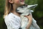 Fillette portant un agneau