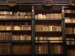 Bibliothèque Inguimbertine Carpentras 2