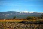 le mont ventoux en automne
