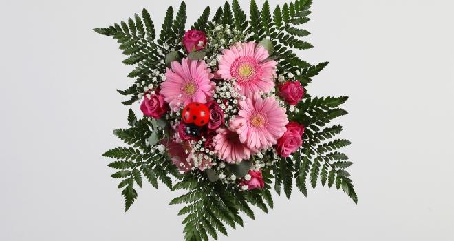Bouquet fond blanc