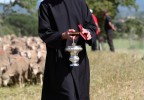 Transhumance Bedoin 2016 3