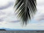 Costa Rica 60