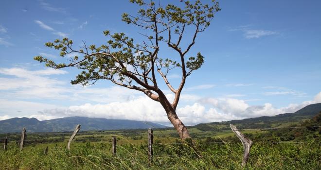 Costa Rica 12