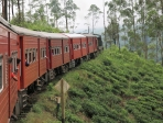 Sri Lanka 36