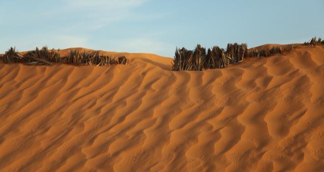 Dune de sable Djerba Tunisie