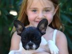 Fillette et chien