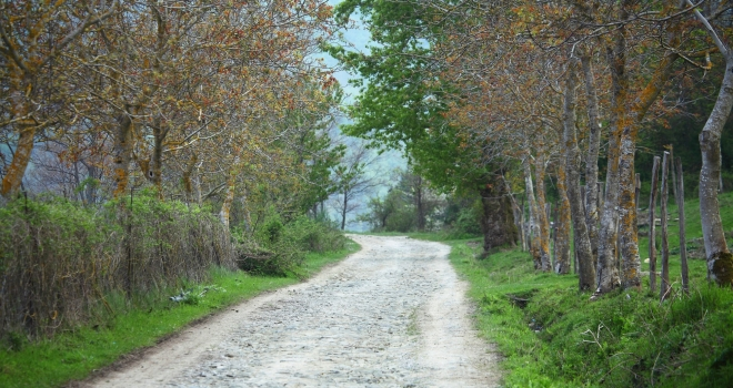 Toscane au printemps 3