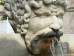 Fontaine à Carpentras