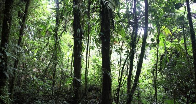 Costa Rica 18